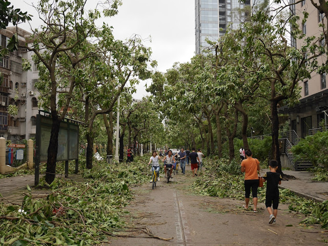 People on Lian'an Road in Zhuhai after Typhoon Hato