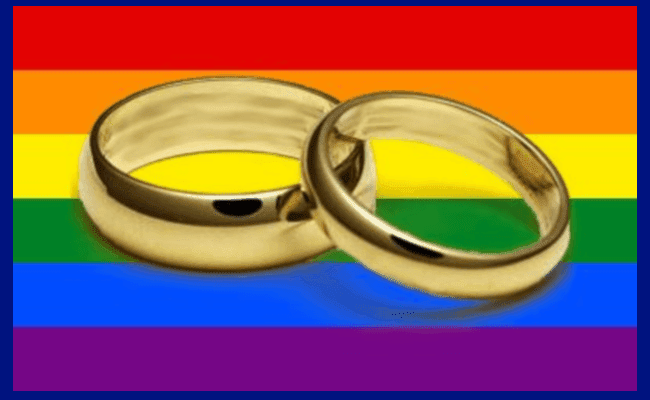 Gay wedding rings.