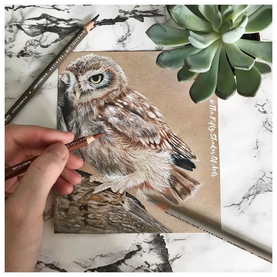 10-Brown-Owl-Solene-Pasquier-www-designstack-co
