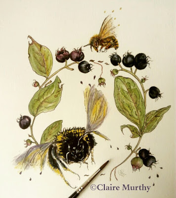 bees watercolour botanical painting