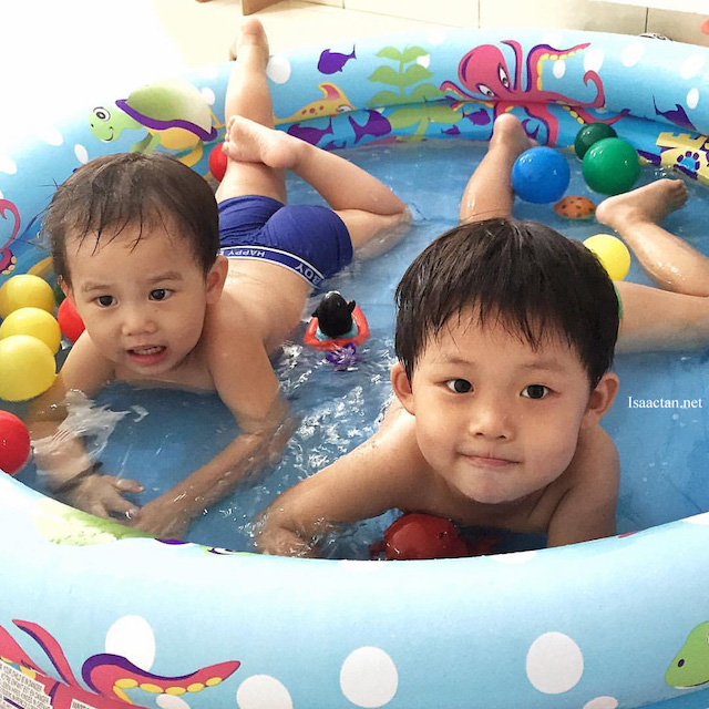 Karlson and Martin having a great time in our mini-pool, care has to be taken to choose suitable wash and shampoo to clean them after their playtime.