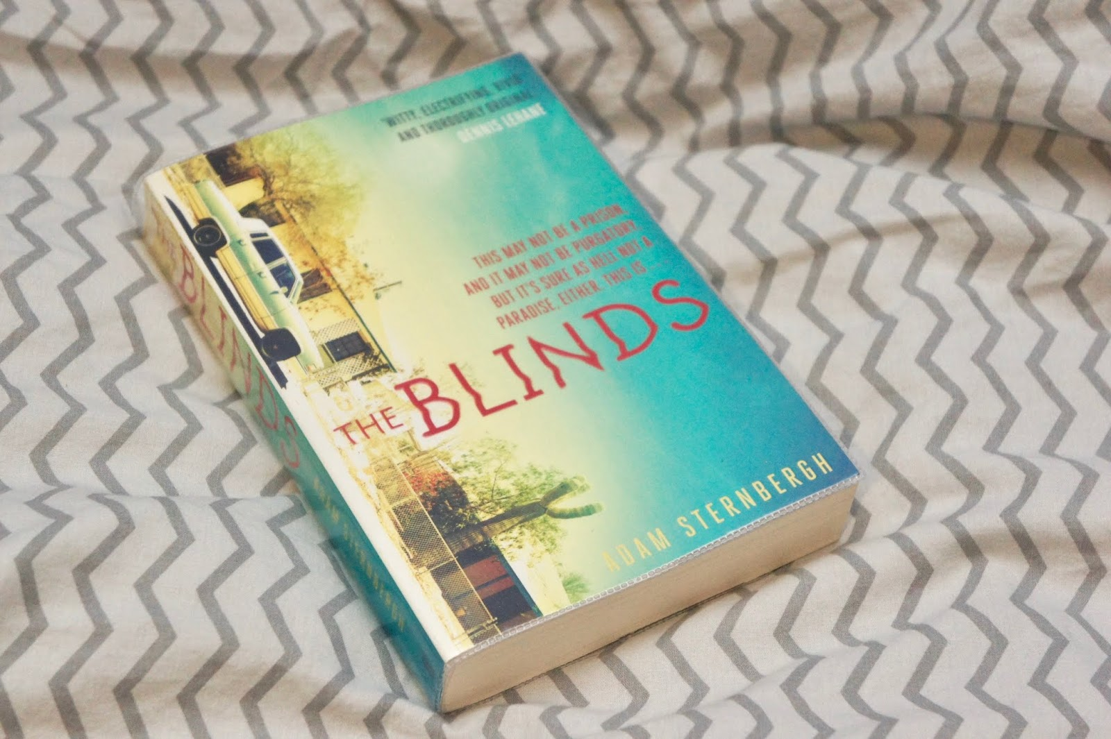 the blinds adam sternbergh