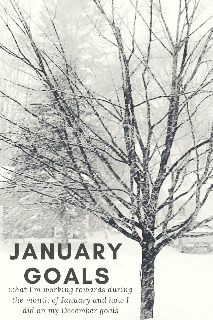 January Goals | kathleenhelen
