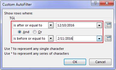 Autofilter Data Pada Excel 16