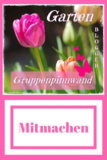 Gartenblog Cluster Gruppenpinnwand für auf Pinterest für Gartenthemen - Gartenblog Topfgartenwelt #gruppenpinnwand #gruppenboard #garten #pinterest
