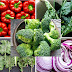 Top 5 Vegetables You Don't Need to Cook Just Eat them Raw