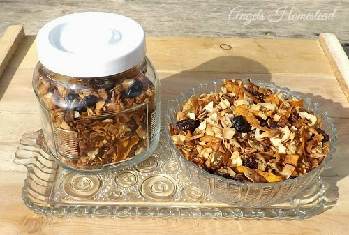 Grain Free Granola - Home Sweet Homestead