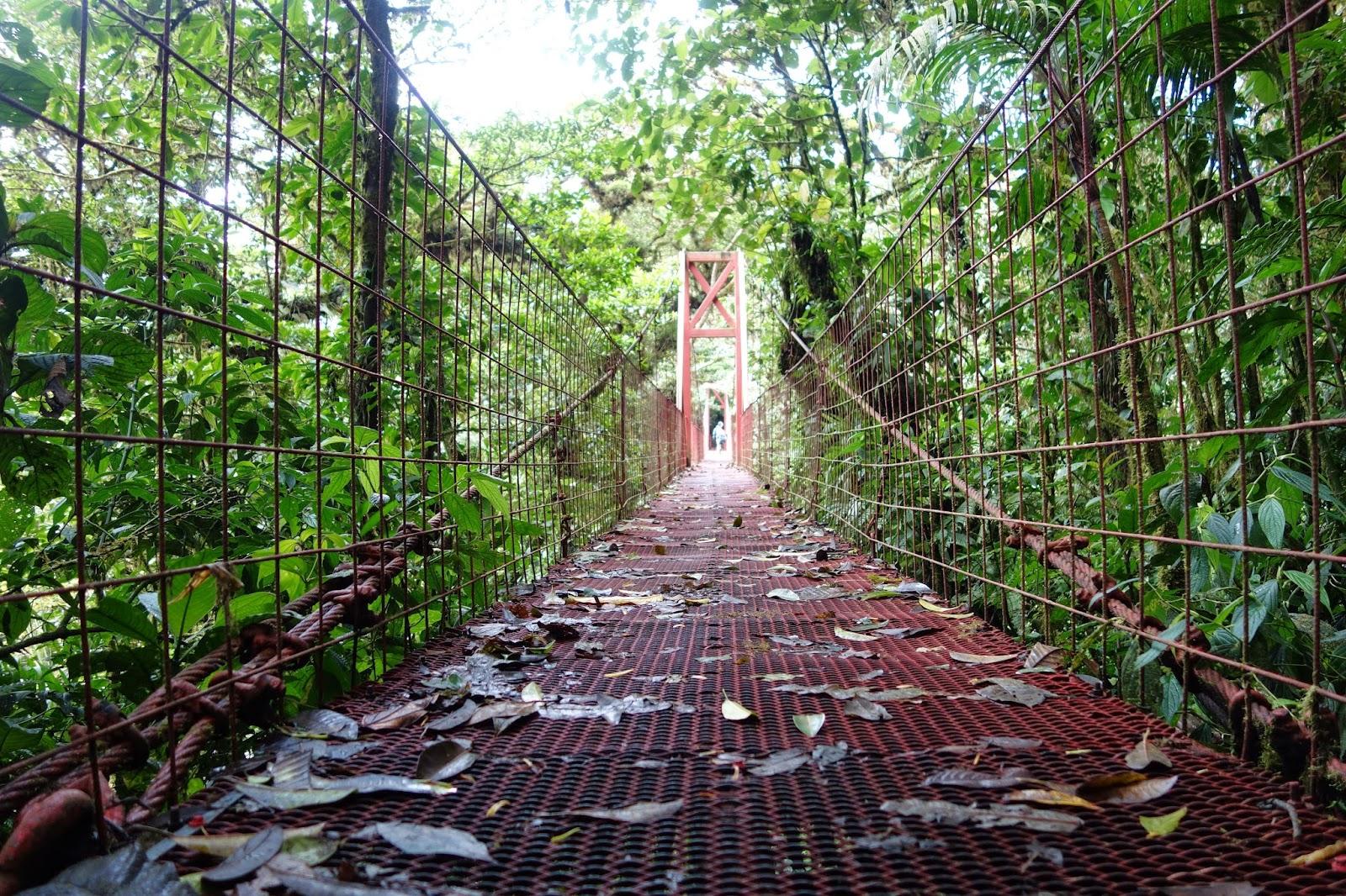 monteverde costa rica blog