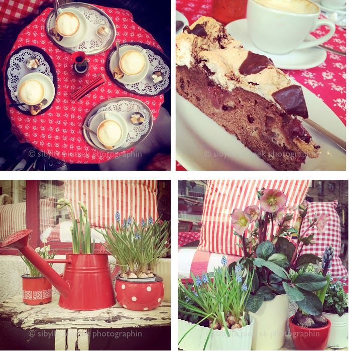 Gartenblick Gartenfotografie Sonntagskuchen In Dusseldorf Kucheneck