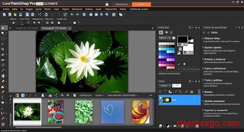 Descargar Corel PaintShop Pro 2019 Ultimate Full key_cap 1