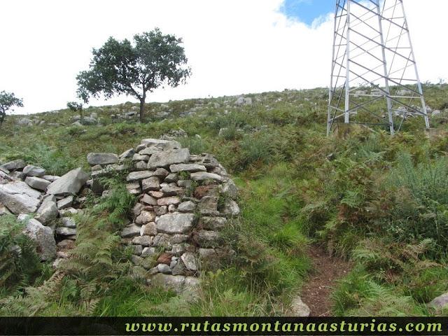 Ruta Bueño Peña Avis: Camino entre la torre de electricidad y muro de piedra