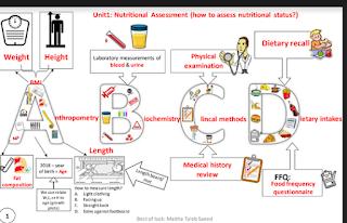 تلخيص مادة العلوم الصحية الوحدة الاولي للصف الثاني عشر