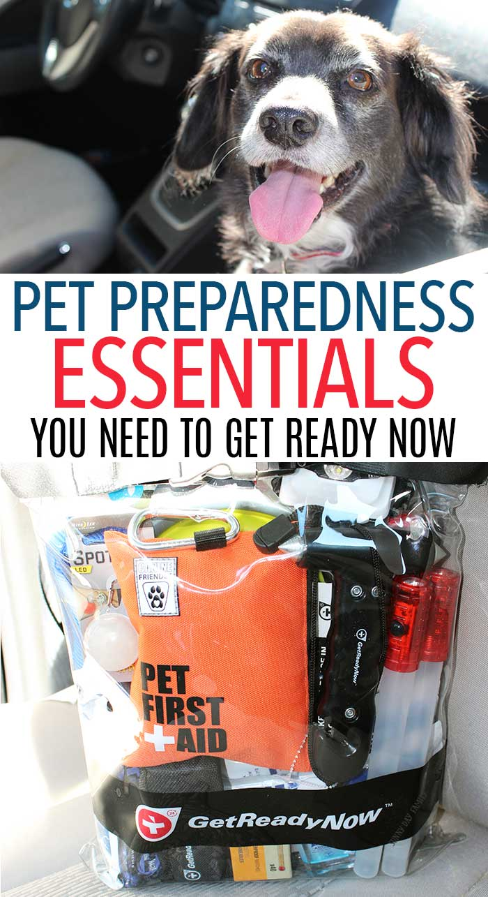 Be prepared for emergencies on the road or at home with these essentials! Whether for travel with pets, road trips with dogs, or disaster preparedness for pets, this pet emergency kit and pet preparedness tips will keep you and your dog safe and happy! (ad)
