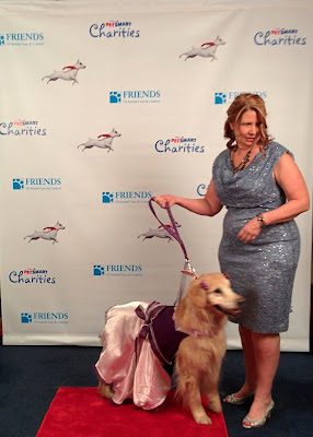 Diva, a therapy dog who was honored at the Hero Awards