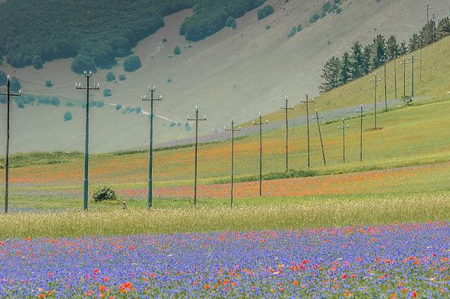 """قرية """"كاستيلوتشو"""" في مقاطعة أومبريا وسط إيطاليا"""
