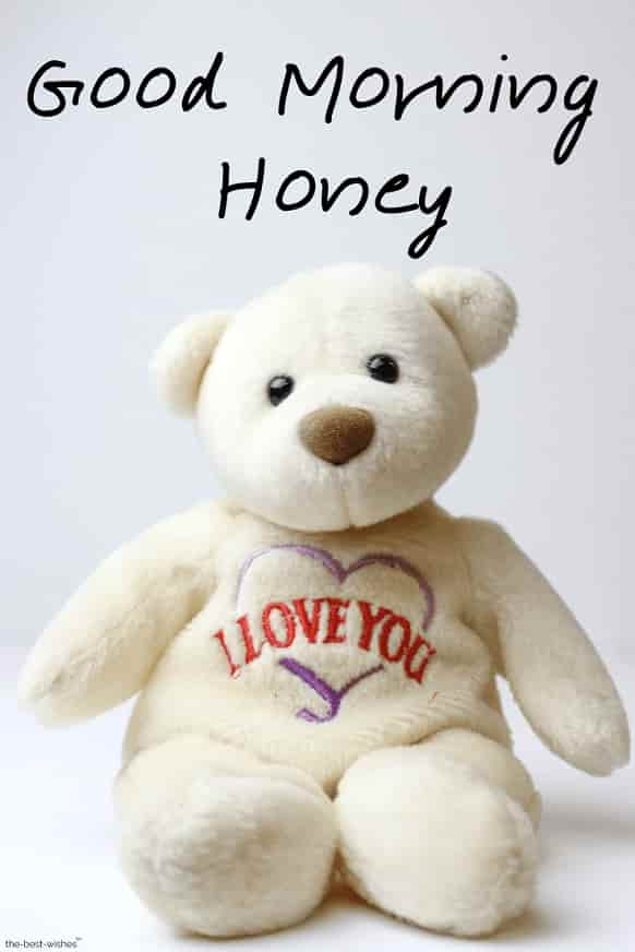 teddy bear good morning honey images