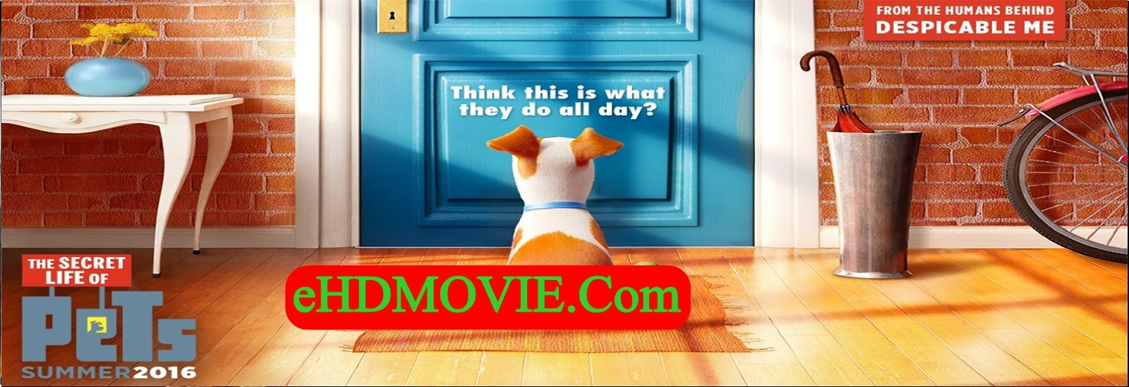 The Secret Life of Pets 2016 Full Movie Dual Audio [Hindi – English] 720p - HEVC - 480p ORG BRRip 120MB - 300MB - 400MB - 750MB ESubs Free Download