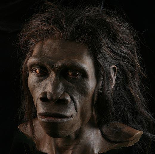 Bigfoot Evidence: Bigfoot: What is it? Digging through ...
