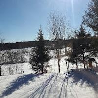 paysage, hiver, neige, Lanaudière, ciel bleu, hiver