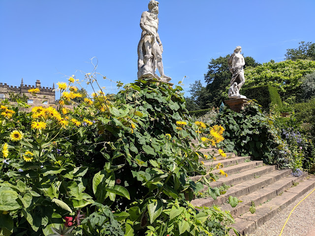 renishaw hall gardens july 2018
