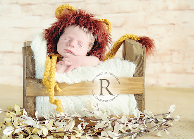 newborn, roni sanches, book bebê, foto de bebê, bebê vestido de leão