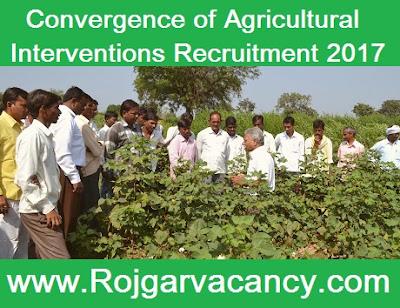 250-field-facilitator-convergence-of-CAIM-Recruitment-2017