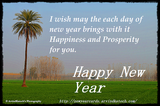 New year, Happiness, Prosperity, Card, New Year Card, Nature Picture