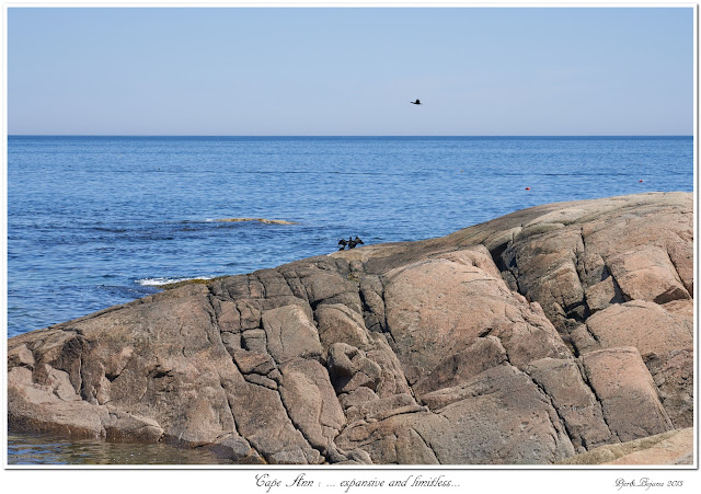 Cape Ann: ... expansive and limitless...