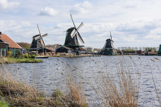Zaanse Schans, 風車村, 荷蘭, holland, netherlands
