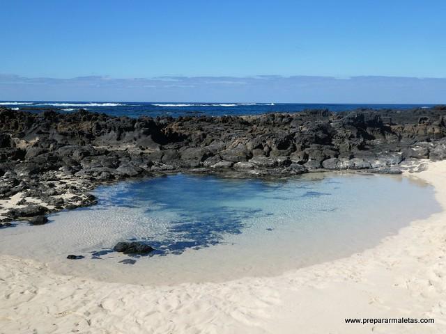 todo lo que se puede ver en Fuerteventura