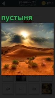Бескрайняя пустыня под палящим солнцем с колючками в отдельных местах