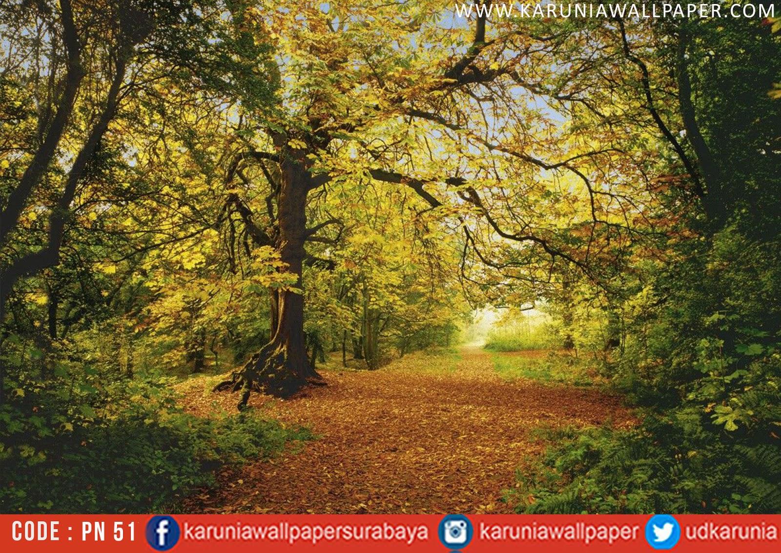 jual photowall hutan