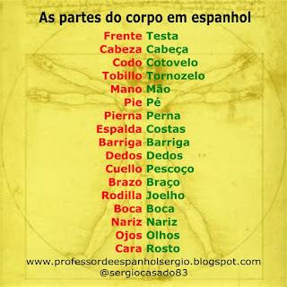 Las partes del cuerpo en portugués