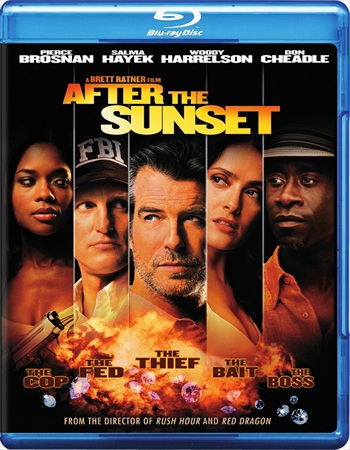 After The Sunset 2004 Dual Audio Hindi Bluray Movie Download