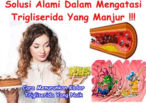 obat trigliserida di apotik