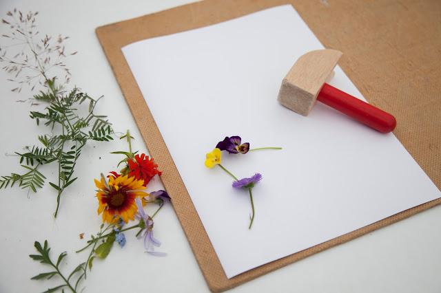 Делаем отпечатки листьев и цветов