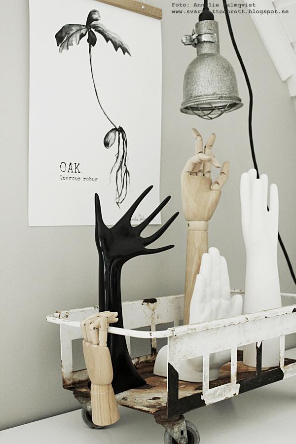posterhängare, poster, posters, print, prints, annelies design, webbutik, webbutiker, webshop, nettbutikk, nettbutikker, plakat, plakater, konsttryck, oak, ekollon, växter, växt, svartvitt svartvit, svartvita, inredning, händer, veckans erbjudande, rabatt, rabatter, rea, hand, hay, gårtt, grå, gråa, vitt, vit, vita, tavla, tavlor,