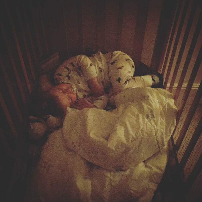 Squidge sleeping in his cot