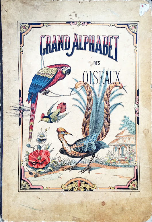 Grand Alphabet des oiseaux, a beautiful and rare hand-colored book edited in 1850.
