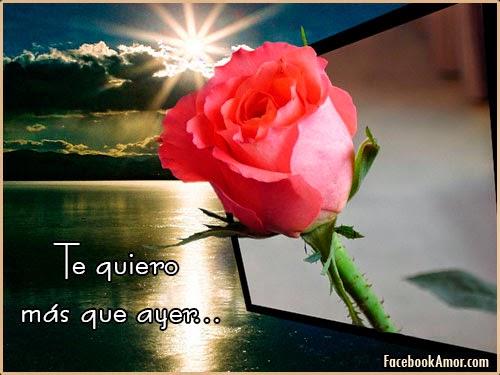 Rosas Rojas Con Frases De Amor: Imágenes Bonitas Para Facebook Amor