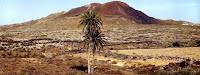 Que ver en Fuerteventura: Rally de La Oliva 3