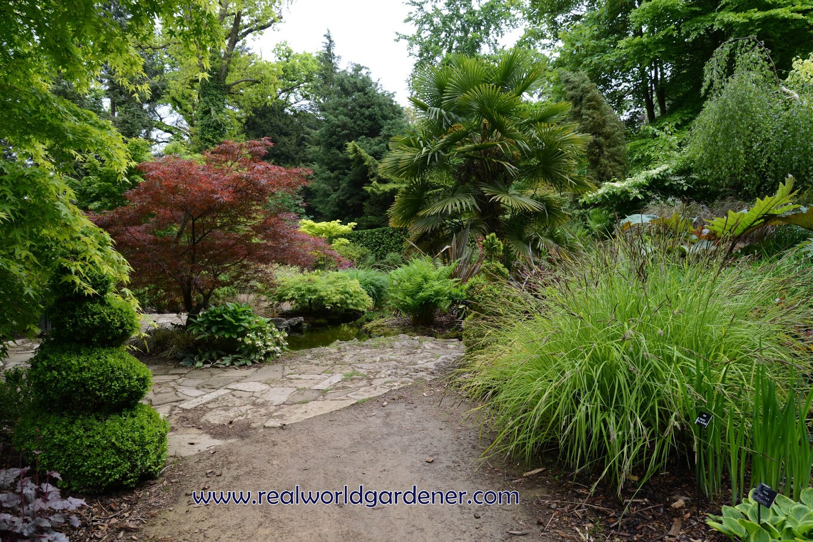 Real world gardener update your garden with different for Garden design podcast