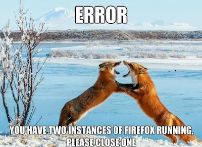 two firefox in fight