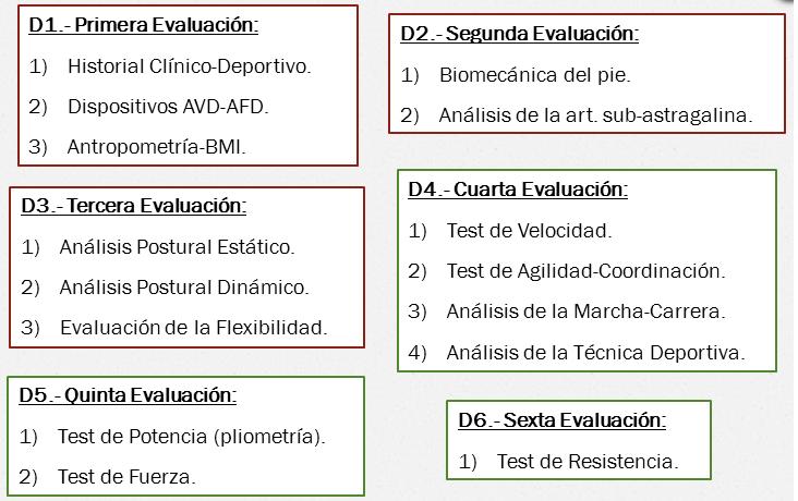 _____ Valoración Funcional: Anamnesis