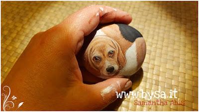 Sassi dipinti beagle