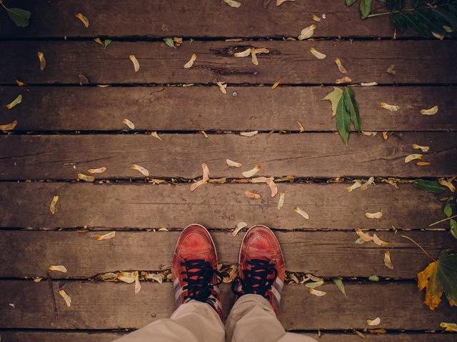 Αλλάζοντας χρώματα το Φθινόπωρο - Προσωπικές ιστορίες