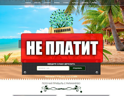 Скриншоты выплат с хайпа paramaribo.biz