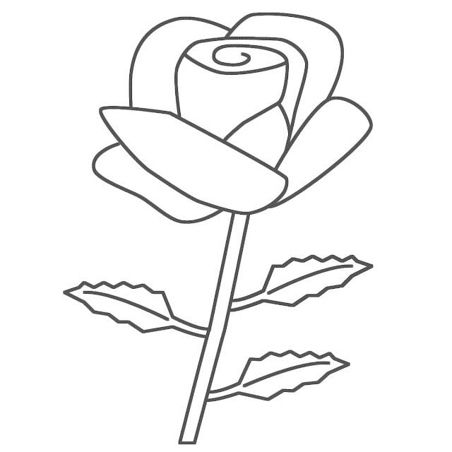 rosa para dibujar para descargar
