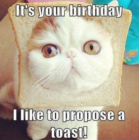 funny-happy-birthday-pictures