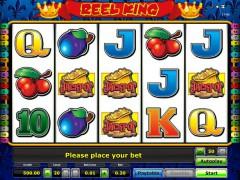 Jucati acum Reel King Online